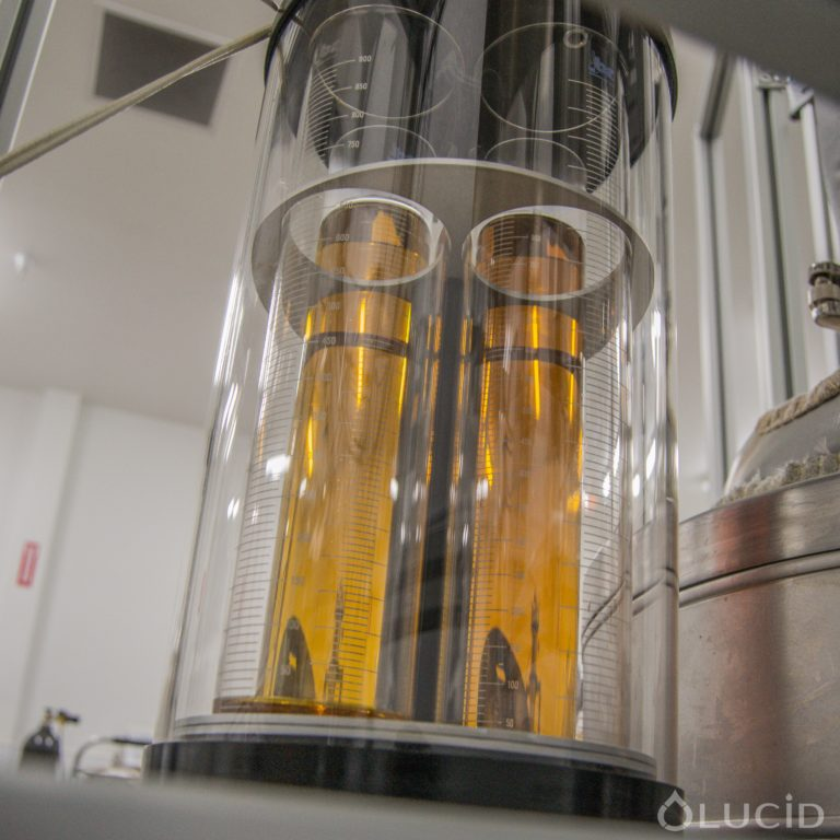 Cannabis Distillation – Why is my Δ9 THC potency low?